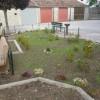 Coltiva il tuo giardino. Intervista a Carmine Gasbarrino, cittadino consapevole.