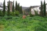Fotoracconto della giornata delle erbe con Lentamente e Daniela Severgnini