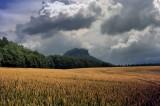 Il grano: mito e simbologia. Dalla Grande Madre a oggi.
