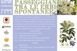 Passeggiando tra le erbe spontanee. Domenica 27 luglio, Sentiero della rosa, Pietrelcina. Coerenze:19/20