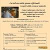 SoldoCorto: Laboratorio di cosmesi naturale. 7 e 8 febbraio, con OfficinaDonne e Oro del Sannio. Coerenze:18/20