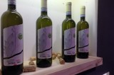 Cena vegan con vino vegano Fontana Reale e il GASb Arcobaleno, venerdì 17 aprile al ristorante 08cento24