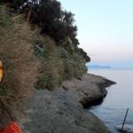 17bacoli-poggio-artempori