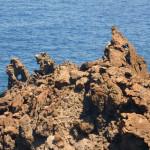 pantelleria05-tullia-bartolini