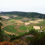 pantelleria19-tullia-bartolini