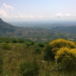 valle vitulanese artempori.it
