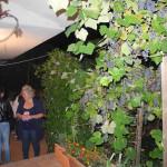 giardini-aperti-21-brunella-severino-cautano