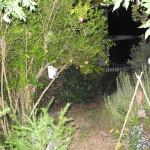 giardini-aperti-32-nina-iadanza-cautano