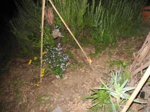 giardini-aperti-34-mariapia cutillo-cautano