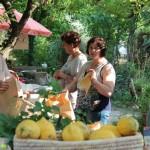 Giornata P'Artigianale, domenica 31 maggio, presso Mariapia Cutillo, San Salvatore Telesino - Foto di Domenico Rapuano